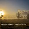 Everglades Sunrise Fog HDR 002