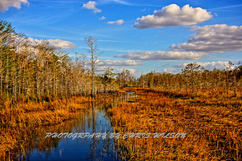 Airboat Everglades HDR 2