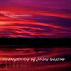 Everglades_01-21-12_0290