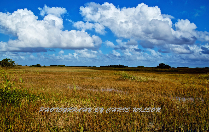 Glades HDR 016