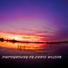 Everglades_01-21-12_0302