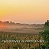 Everglades_12-23-10_0117
