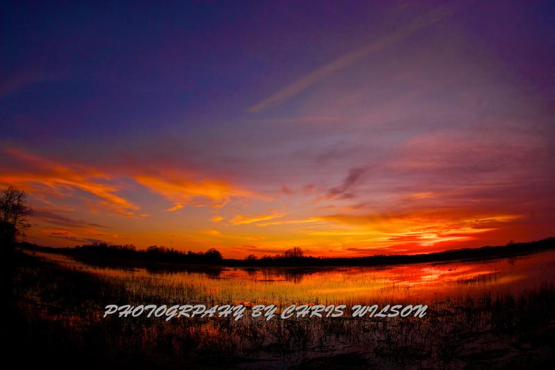Everglades_01-21-12_0280