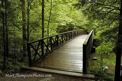 Bridge in the Smokey's-M