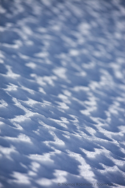 A low angle shows the texture of snow near Artist Point.