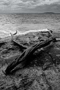 """""""Stranded"""" Jarvis Bay - NSW  Landscape Image"""