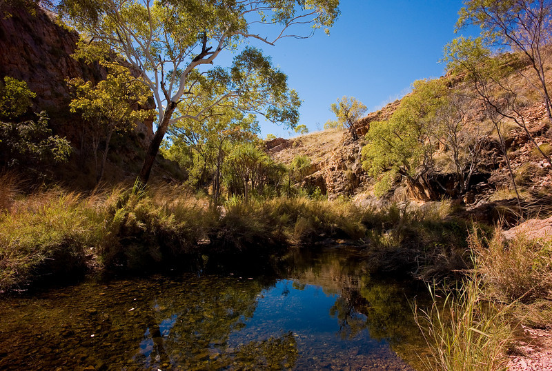 Molly Spring, off Gibb River Road