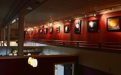 Cafe Peroni - South Boston, VA<br /> June 2009 - Present