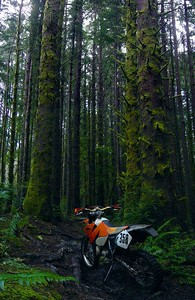 Coastal riding area south of Coos Bay, Oregon.  This was a day I wished I'd studded up for!