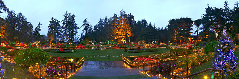 """Shore Acres annual Christmas lights display near Coos Bay, Oregon.  My mother and sister had the good idea to go see the display just as the sun set.  It was wonderful to see the lights in the twilight.  I was woefully unprepared for this shot, and it shows in the results...  Sigh.  First, it's pouring down rain, no umbrella.  I didn't have my pano head, so there are parallax errors that aren't correctable, so don't whine to me about being able to see seams; I know, I know!  ;-)  I didn't have a lens shroud with me, so I got some nasty bloom to the left.  Joy..  This is my first posting of a photo post processed with Apple's Aperture product.  It's sort of a super iPhoto vs. a Photoshop like tool.  I'm using it on trial right now, but I may cough up the money.  It's pretty cool.  Not to be confused with the tool that I assembled the panorama, which is still our trusworthy PTmac panorama stitcher..  I used the output of seven photos to make this image from the gazebo on the South side of the grounds. Oh, oh, the other thing that this photo doesn't capture is all the animated lighting!  Whales are jumping, fish swimming, seal lions cavorting.  Except for raining on us two years in a row now, it's REALLY a cool thing to go see. We were all imressed and gratified to see exstensive use of new LED technology light strings.  Not only does it make us feel good about the power savings, but the whole blue end of the spectrum was very vividly represented - deep blues, purples and lavenders that for a change were true and bright, not just faded paint coating on an incandescent bulb.  (There were a few """"blue"""" old style that were quite faded..)"""