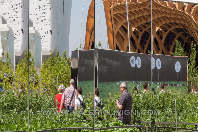 Expo 2015: Reflections - Riflessi