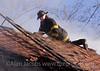 Still Alarm 1348 S. Marshfield 12/8/06