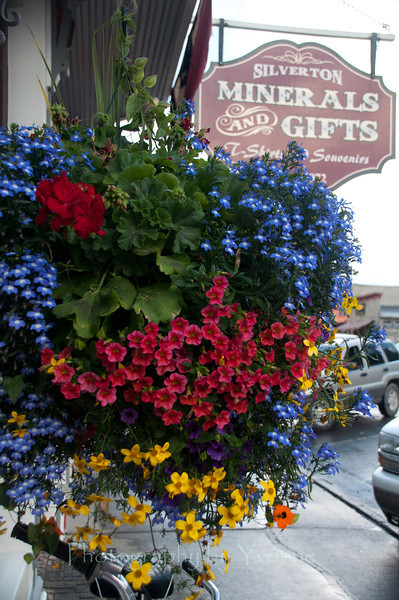 Bright flower basket hanging at storefront in Silverton CO. 7/7/13