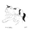 LINE DRAWING of TWO CATS, NEW ORLEANS, LOUISIANA
