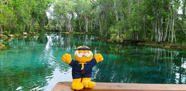 Garfield visits Three Sisters Springs
