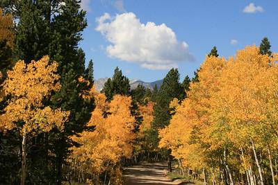 Fall 2008: Aspen, Peak to Peak Highway