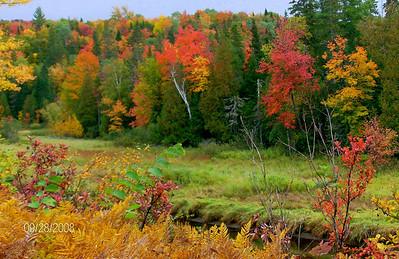 Saranac River, east of  Saranac Lake village, sep 28, 2008 HPIM0123-1