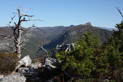Looking north toward the Chimneys and Table Rock in Linville Gorge