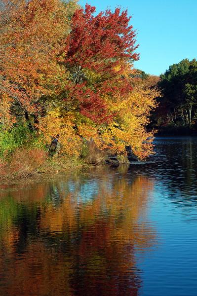 Ellis Pond, Norwod, MA
