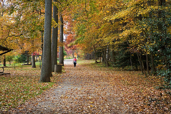 Fall Colors - Greenbelt Lake
