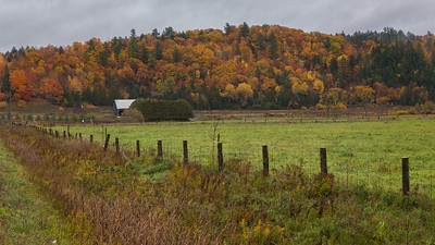 Fence and Field in Fall