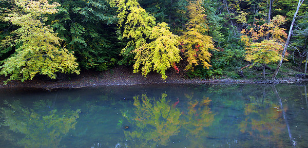 20oct09 bishop--- FALL COLOR Reflections of trees in the Black River in Cascade Park