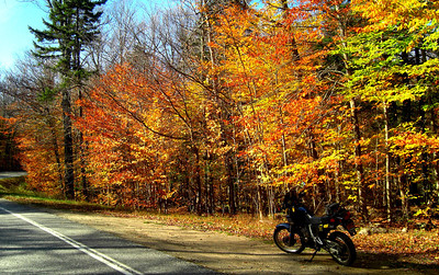 Forest Home Rd, oct 17, 2012 CIMG7702