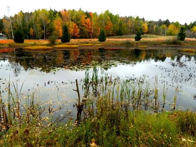 Saranac Lake HS Pond, oct 10, 2012 DSCN1697