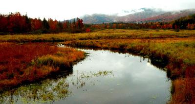 Saranac River, oct 4, 2012  DSCN1580