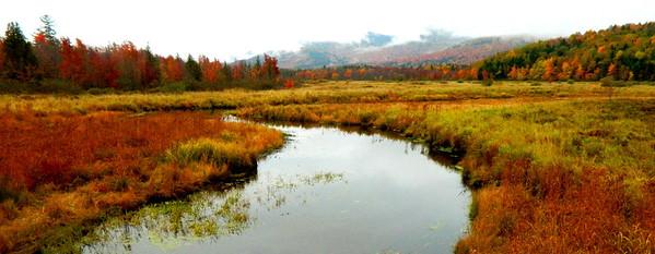 Saranac River, oct 4, 2012  DSCN1574