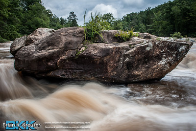 Alcovy River~Factory Shoals Park