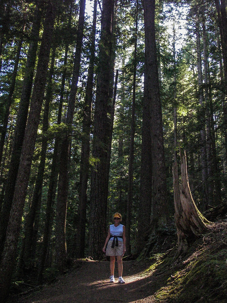 Kathy hiking around Mt Rainier
