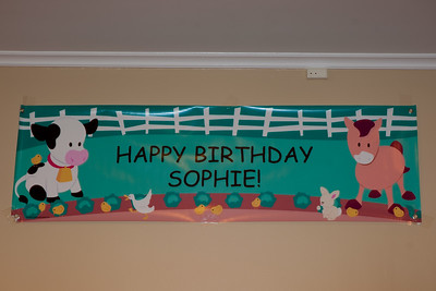 Sophie's First Birthday