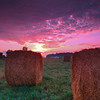 Bales stand still as the sun's first rays break through a sheen of low lying clouds.<br /> Hudsonville, MI