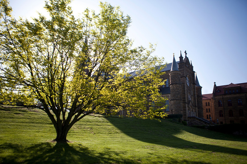 The sun shines through the tree outside the Archabbey Church in the morning on April 30.