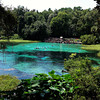 Rainbow Spring Florida