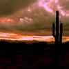 Arizona, Ahwatukee, sunset nov 28, 2006 400dpi