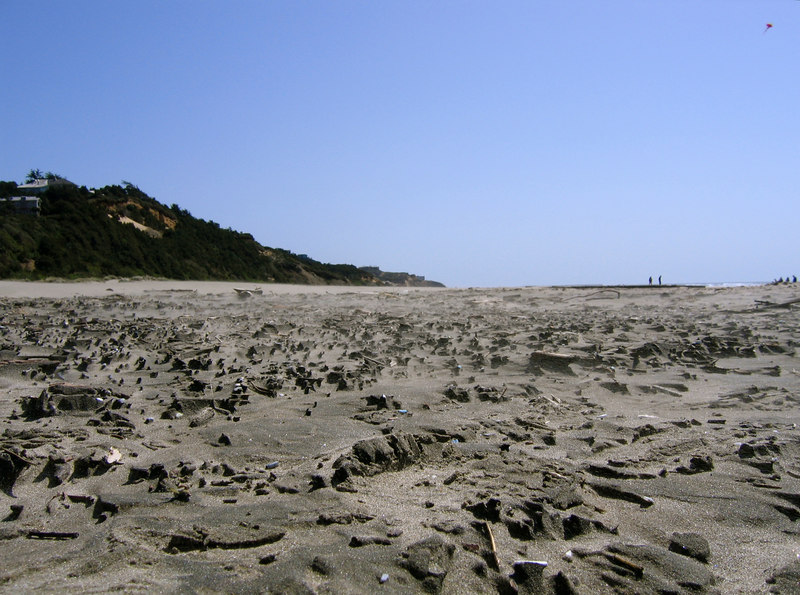 Agate Beach, the camera is very close to ground level.