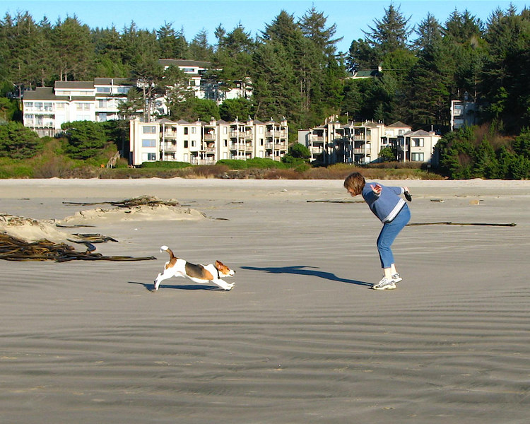 December 2, 2006 -- It was a beautiful day in Newport and Agate Beach was nearly deserted.