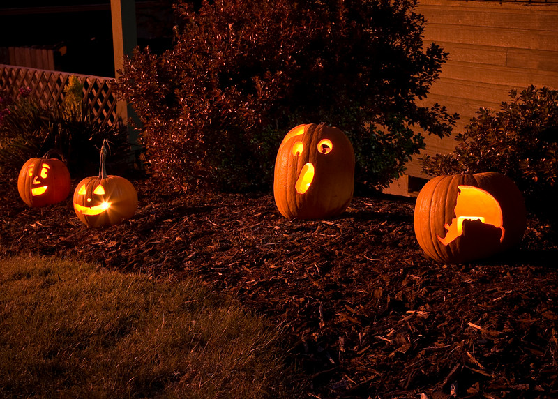 Here are our carved pumpkins out in the front yard, lit by internal candle light, on Halloween Night. All six of our Trick-Or-Treaters probably enjoyed seeing them! :-)