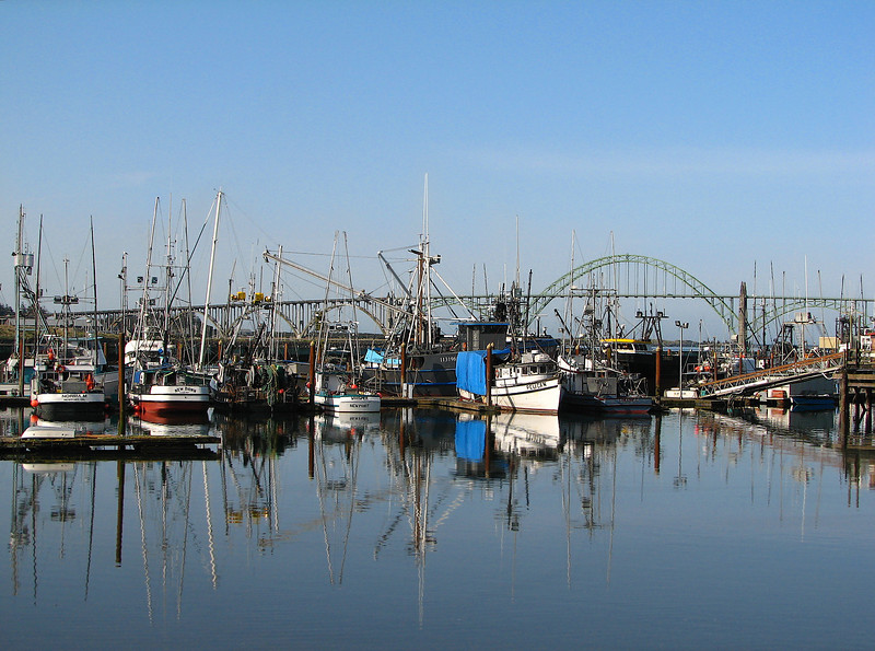 Yaquina Bay fishing fleet with the bridge in the background.