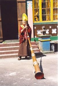 Monk (Sikkim 2000)