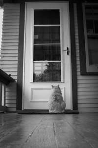 Let Me In, Please.