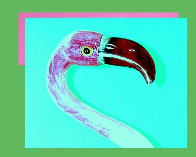 Jill Duncan_portrate of a plastic pink flamingo_16x20_digital photo