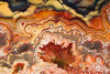 #278 Crazy Lace Agate Close-up