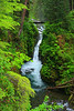 #287 Sol Duc Falls, Olympic Natl. Park, WA