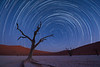 Nam 089 Star Trails Deadvlei Namibia
