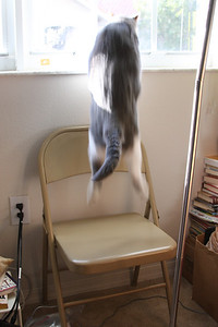 Jumping Teo.