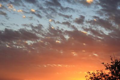 Evening, Nov. 17, 2012.