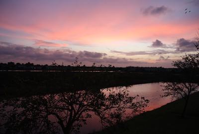 Evening, Dec. 28, 2012.